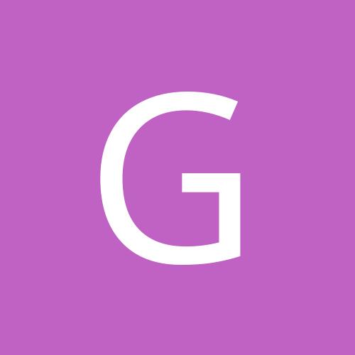 ginobear